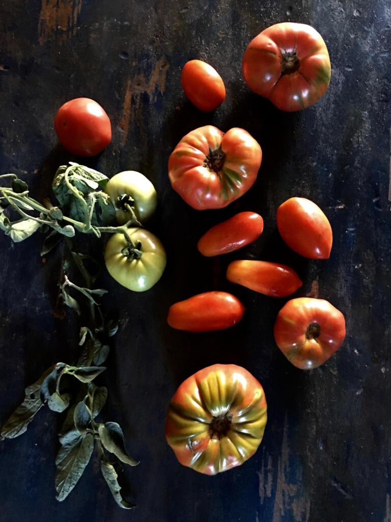 Tomatoes for Summer Salsa