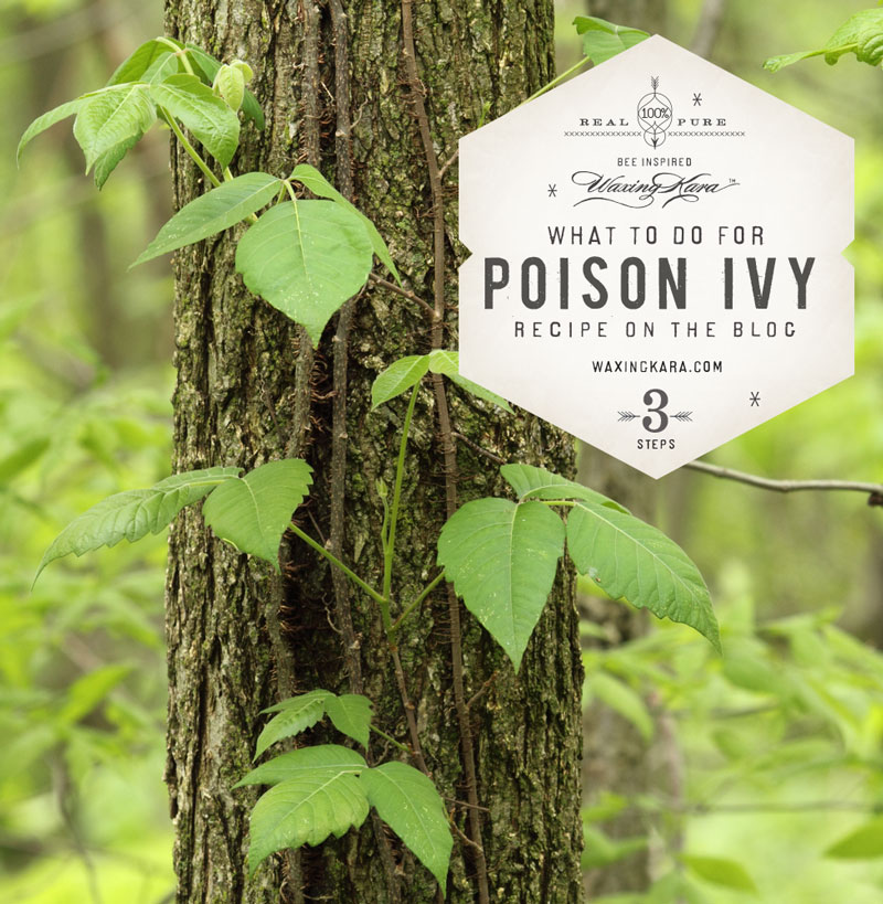 """The best poison ivy advice, ever, """"Leaves of three, let it bee."""""""