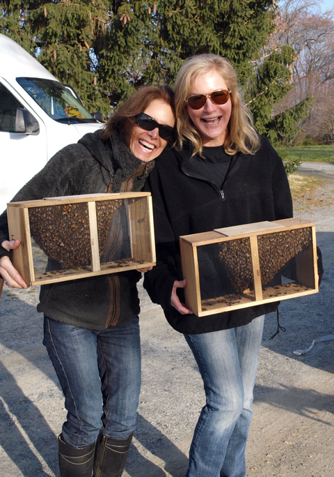 Kara and Joyce with Package Bees