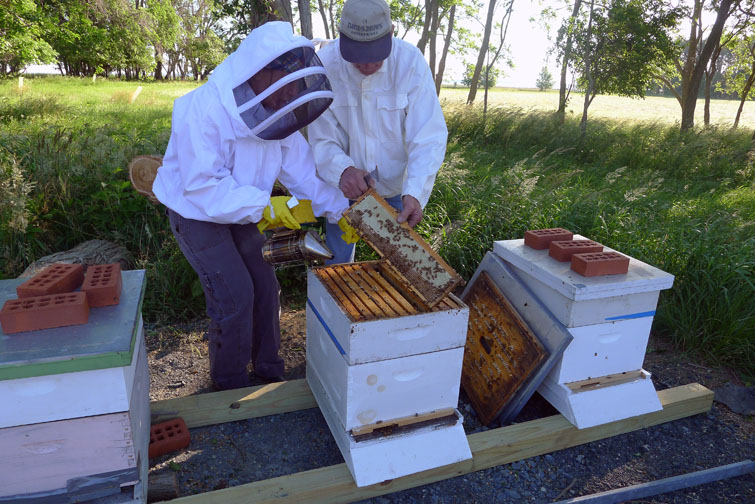 Dale and I in the bee yard installing bees in 2013