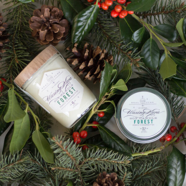 Forest Soy Candles in winter greenery