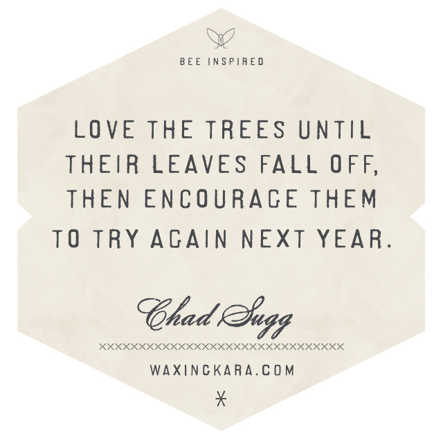 Love the trees until their leaves fall off then encourage them to try again next year. Chad Sagg Valentine Quote