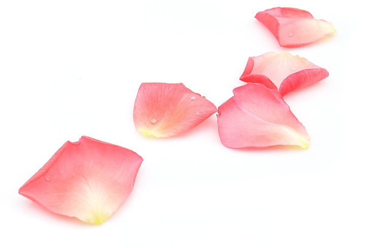 pink rose petals on white for rose honey infusion