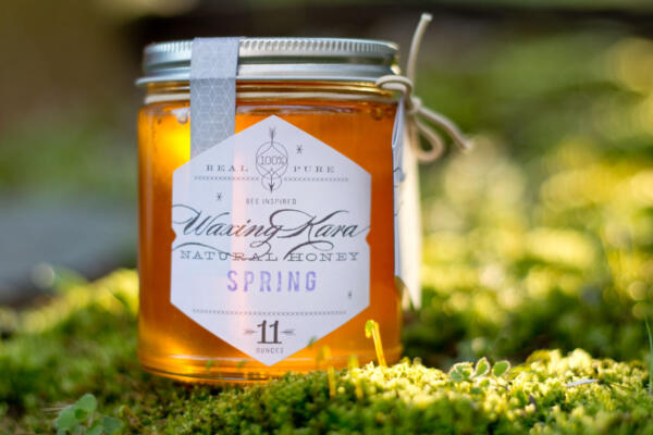 Spring Honey outside in the beautiful light on a grass meadow