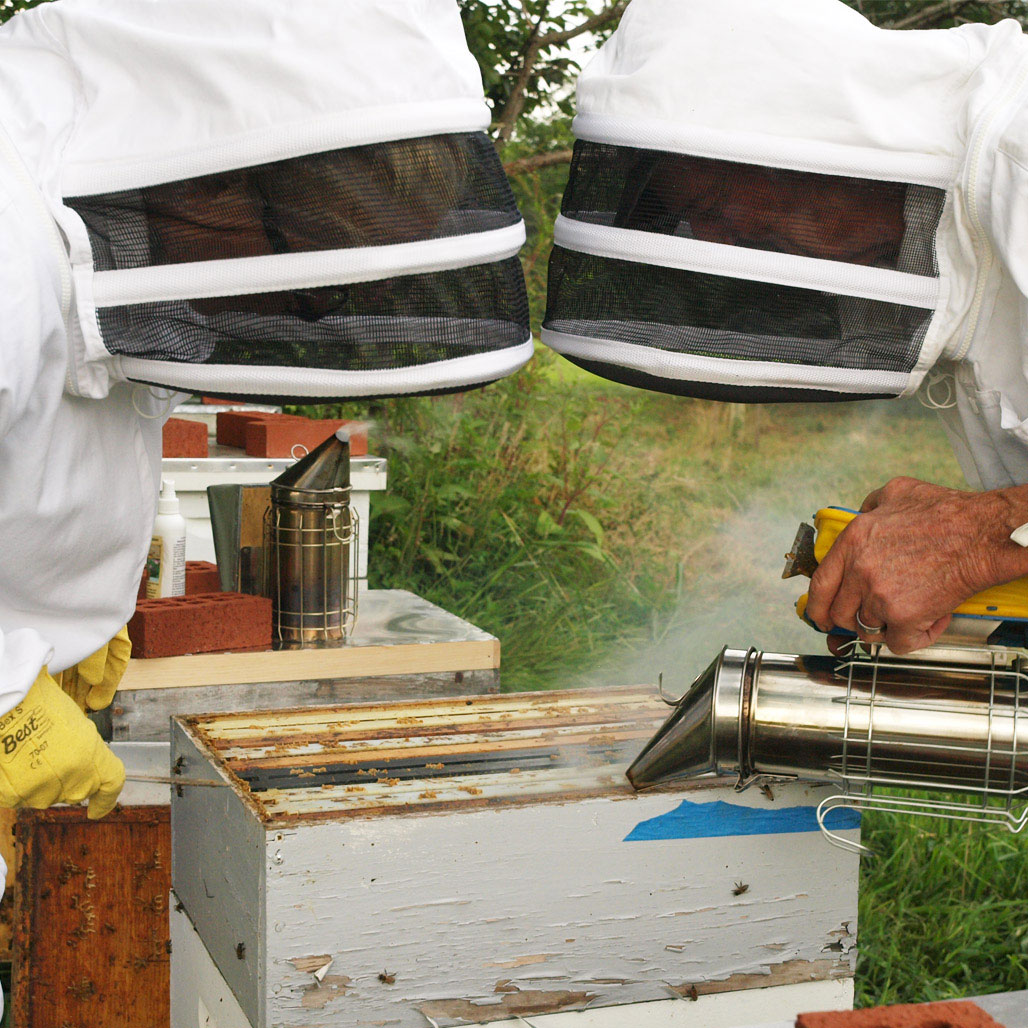 Dale and I at the hives, preparing for harvest