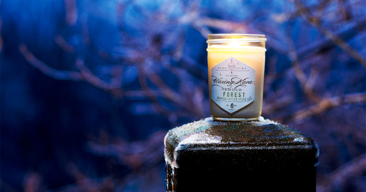 Forest soy candle in jelly jar