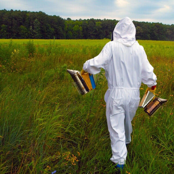 Kara on her way to the hives