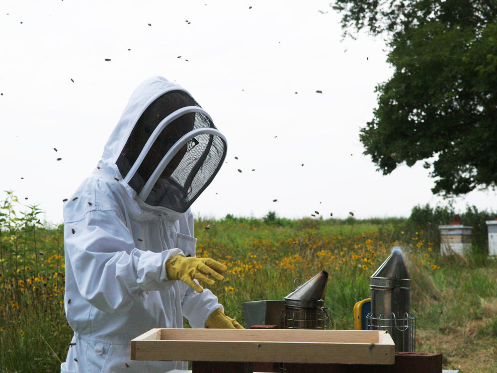 Kara at the hive for how to treat a bee sting piece