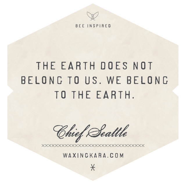 The Earth does not belong to us, we belong to the Earth-Chief Seattle