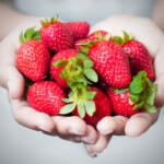 How to Grow Strawberries in Hand