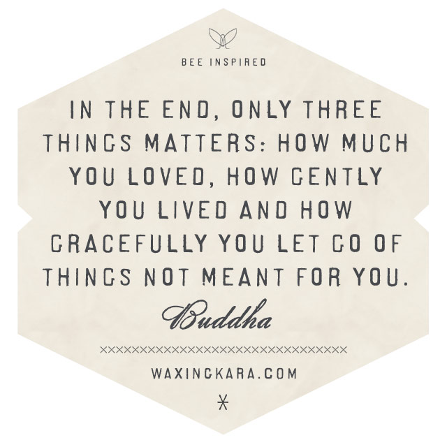 In the end, only three things matters. How much you loved, how gently you lived and how gracefully you let go of things not meant for you. --Buddha