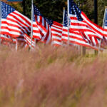 Field of flags in warm light and tall autumn grasses for Veterans Day and Memorial Day