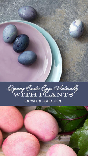 Dyeing Easter Eggs Naturally Tall Pin