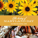 Maryland Day Pinterest Image