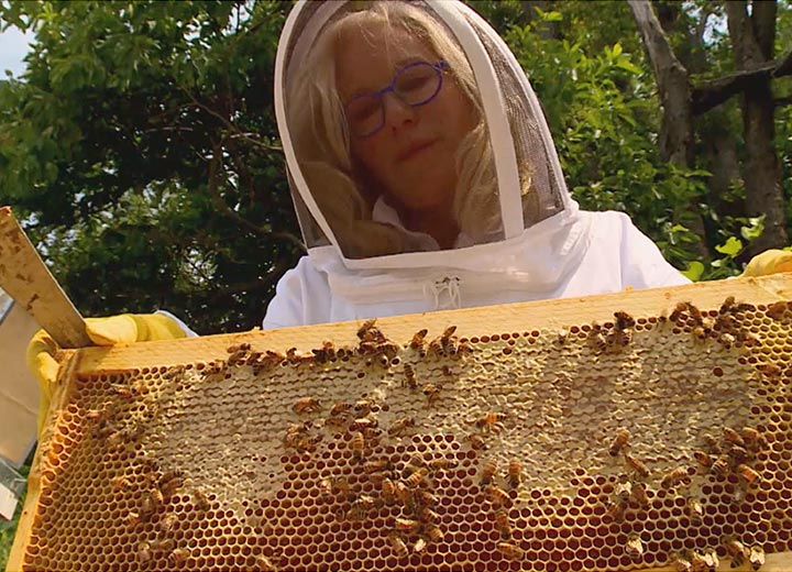 Picture of Kara in bee suit holding a honeycomb rack of bees