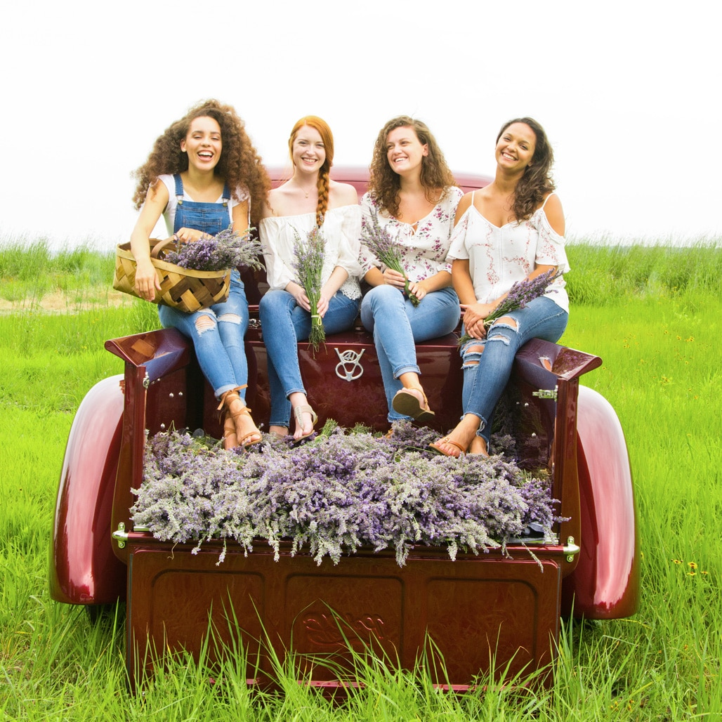 All four of our girls, with bunches of lavender in the field