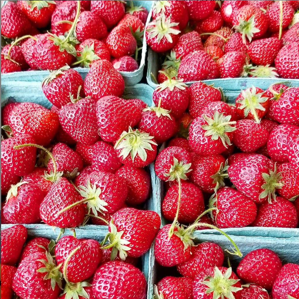 Baskets of fresh strawberries from a farmer's market sit next to each other ready for strawberry recipes