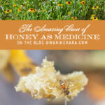 The Amazing Power of Honey as Medicine Tall Pin